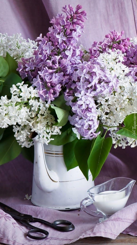 Bukiet Bzu Tapeta Na Telefon Glass Vase Wallpaper Plants