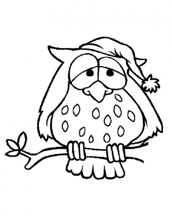 Eule 4 Coloring Pages Drawi