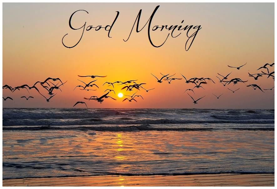 Good Morning Good Morning Sunrise Good Morning Nature Good Morning Images Hd