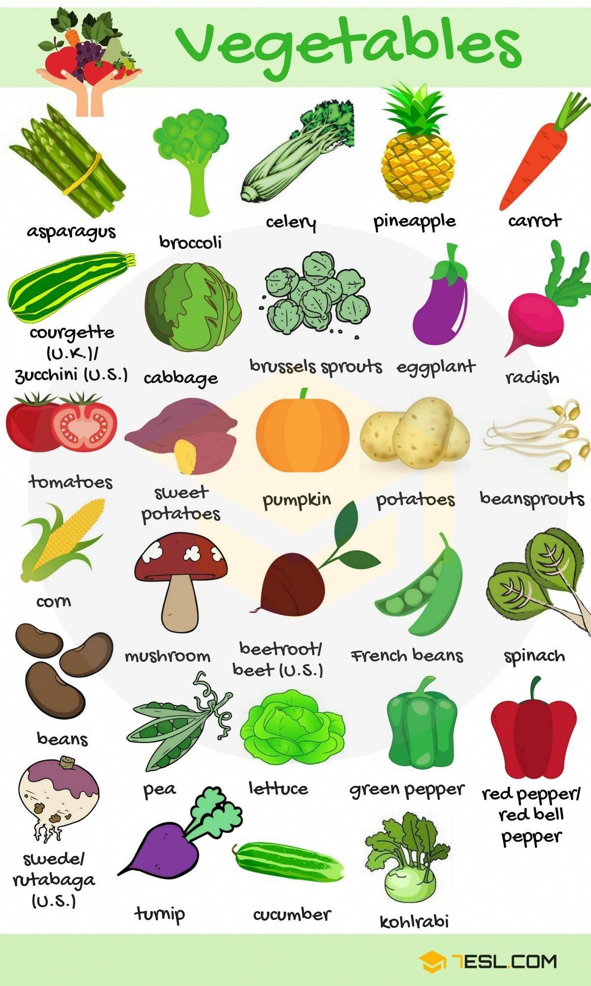 List Of Vegetables Useful Vegetables Names With Images 7 E S L Apprendreanglais Apprendreangl Apprendre L Anglais Apprentissage De L Anglais Anglais Facile