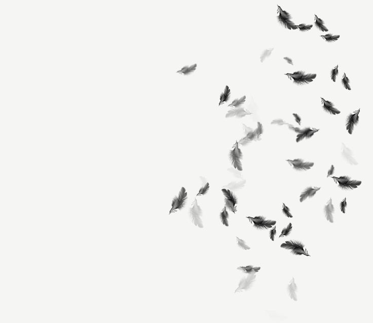 Falling Feathers Drawing Google Search Tumblr Backgrounds Black Wallpapers Tumblr Galaxy Tumblr Backgrounds