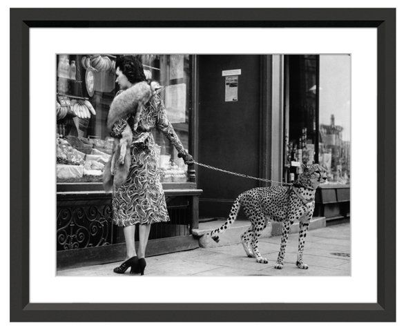 Cheetah Who Shops in London Now 159.00 Was 199.00