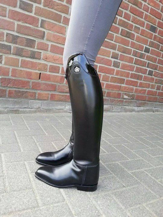 Nice shiny bow, I love that boot style. | Rider boots