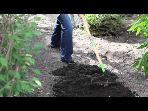 How To Lay Sod Over Tree Roots Sod Topsoil Youtube How To Lay Sod Tree Roots Top Soil