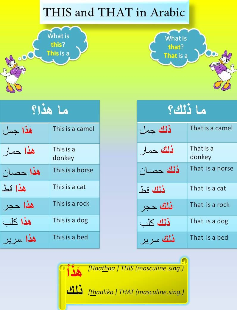 speaker | translate English to Arabic: Cambridge Dictionary