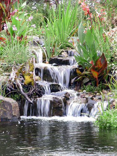 Koi ponds pond filters pond supplies redmond wa for Waterfall supplies