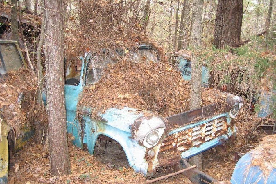 Wreck Tree Car