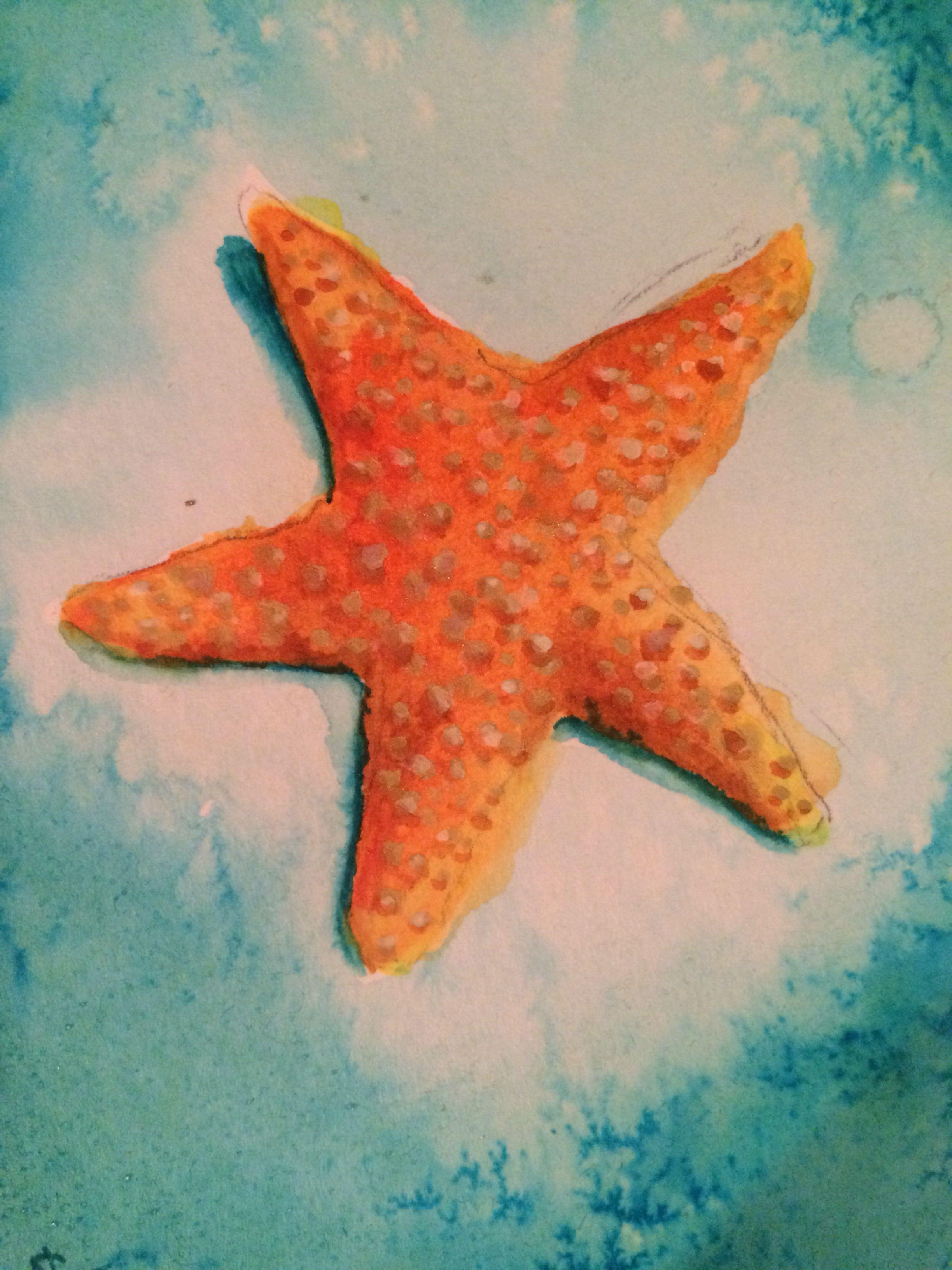 Todays The Day Meme Starfish