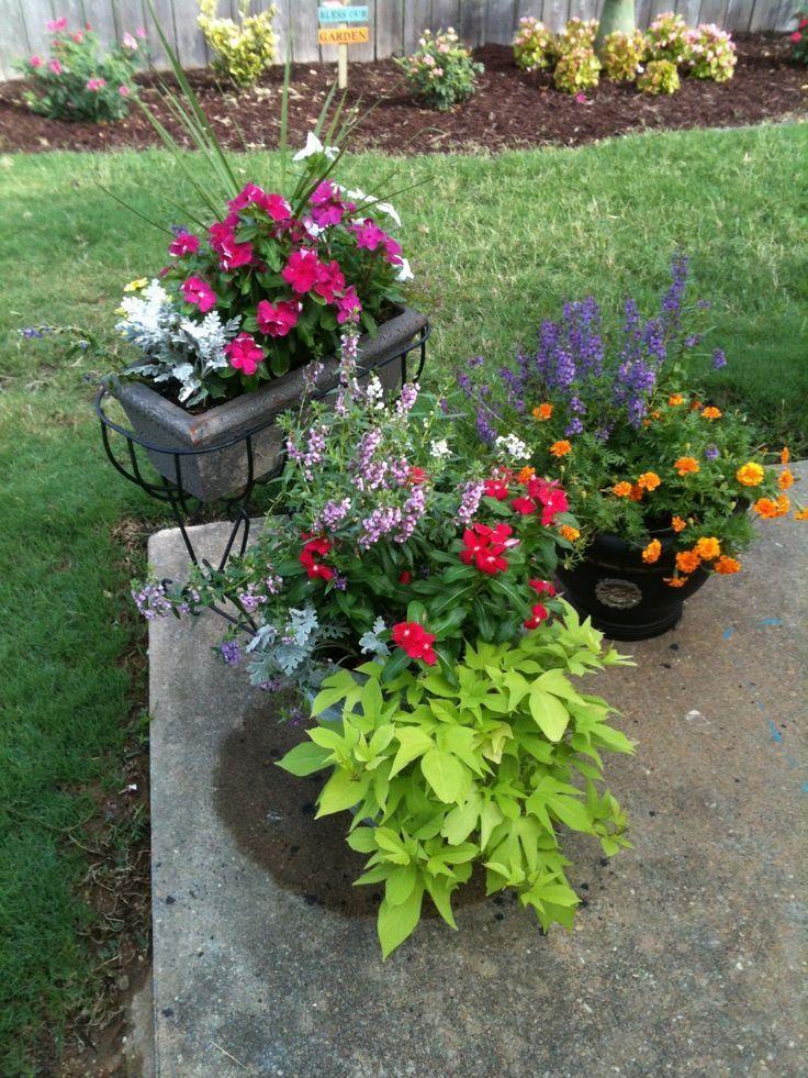 52 flower garden ideas beginners beginners flower