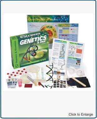 Genetics dna biological inheritance genetic engineering head genetics dna biological inheritance genetic engineering head into the lab for an in malvernweather