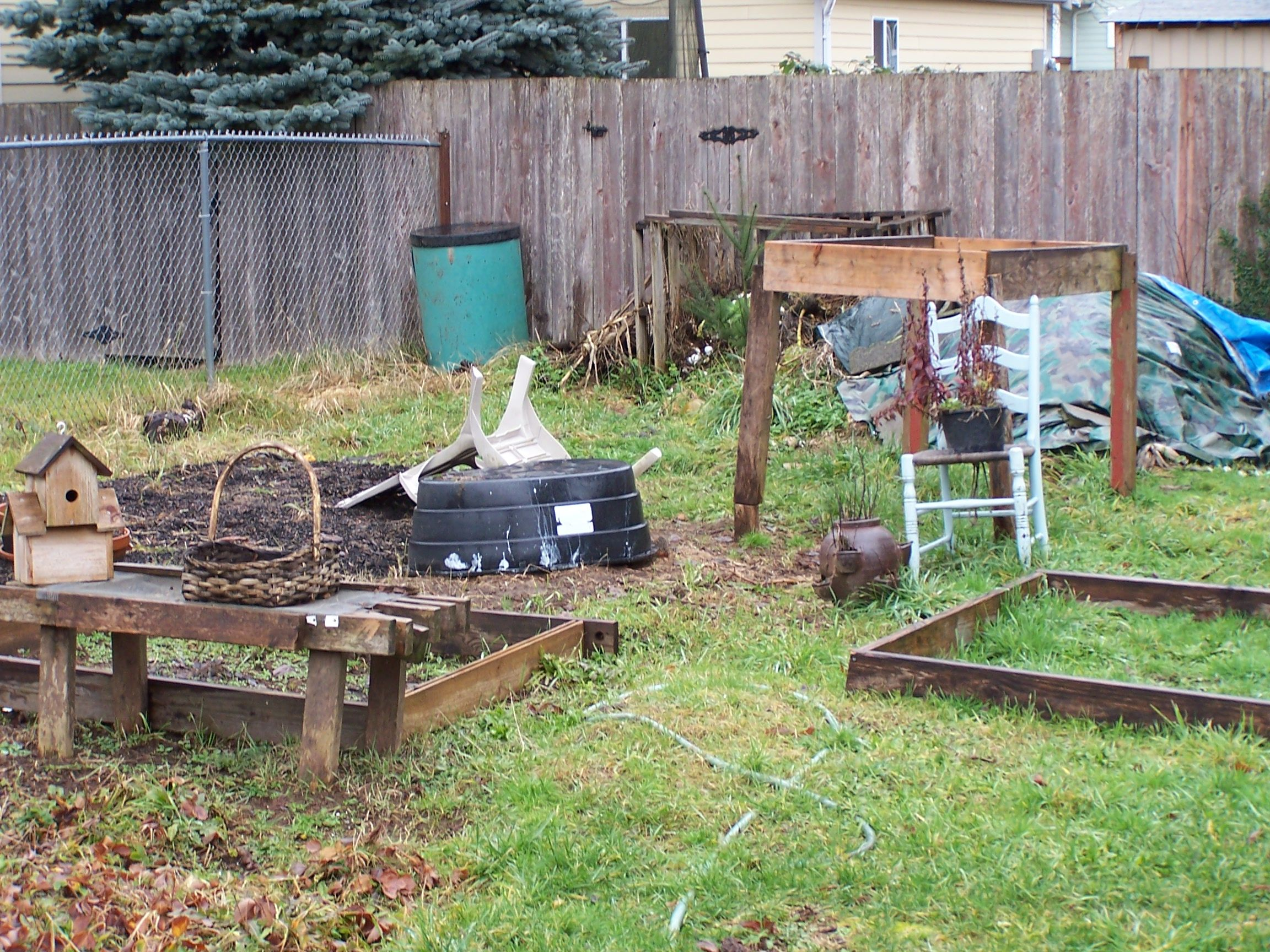 your backyard garden for a self-sufficient lifestyle
