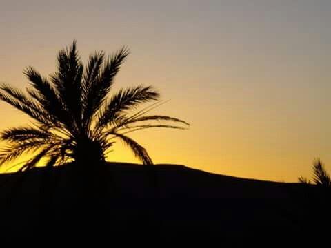 Tata♡ Sud du Maroc