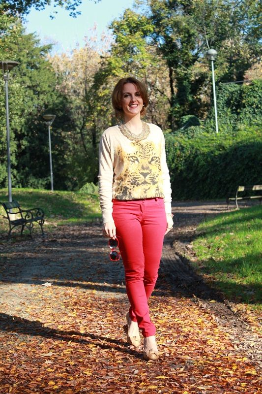 Roar (with my red pants). – The Indian Savage diary - sweater tiger, roar, red pants