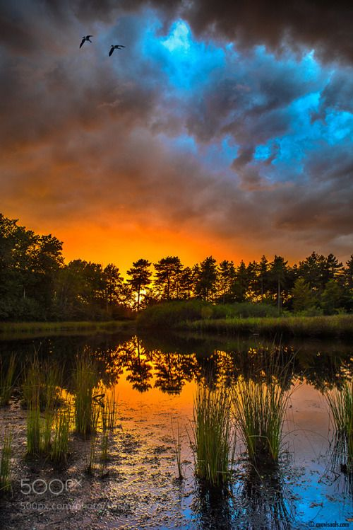 Mid Summer Nights by mmpschamp  fire sky landscape lake birds sunset water reflection nature sun wind clouds summer beautiful story
