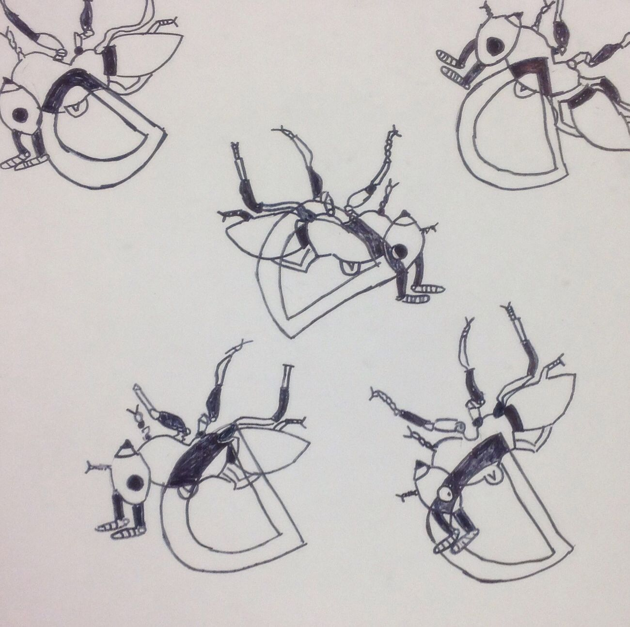 Positive/Negative Space Bug Project