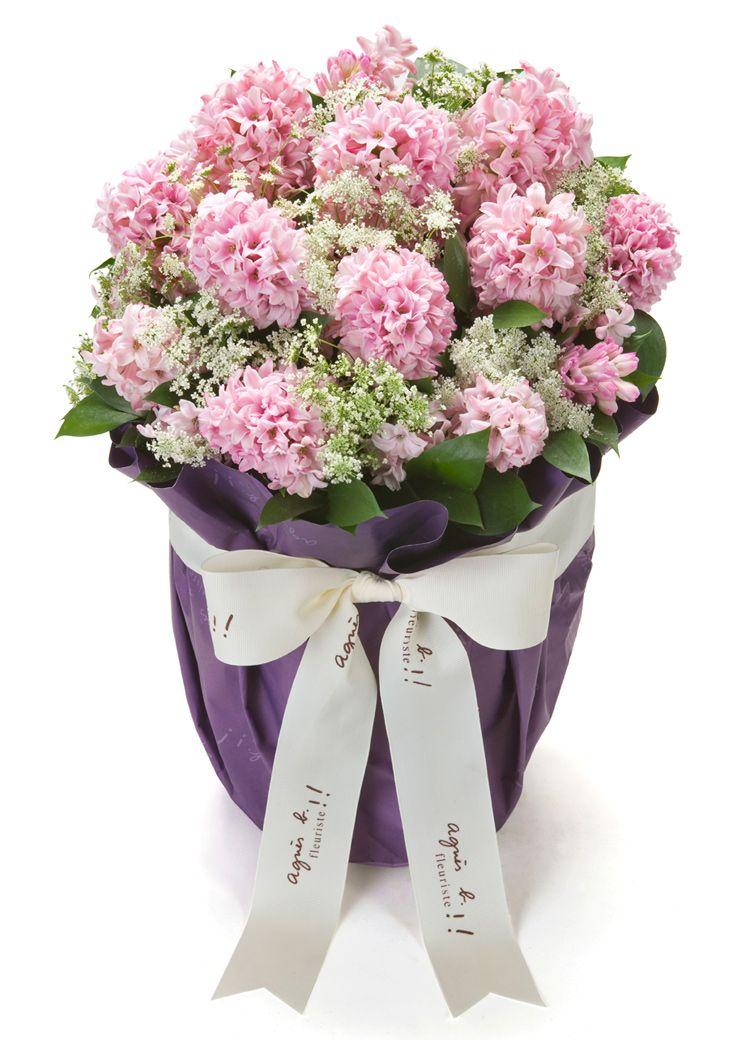 Pink Hyacinthus Flowers Bouquet Flower Arrangements Bouquet