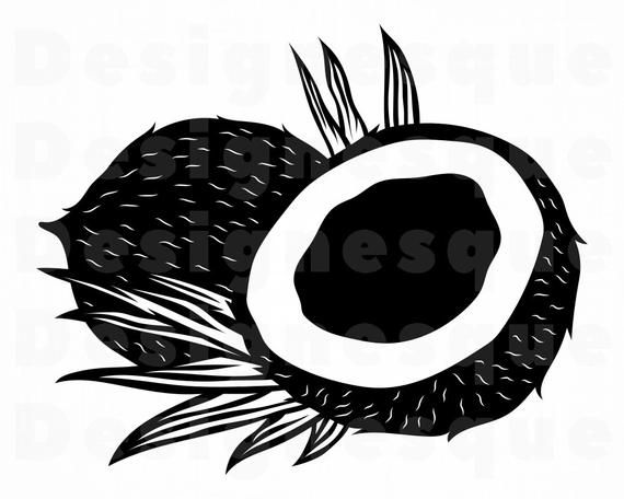 Coconut 3 Svg Coconut Svg Coconut Clipart Coconut Files Etsy In 2021 Coconut Clipart Clip Art Svg