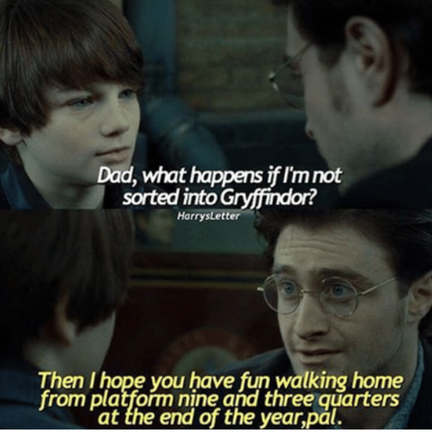 100 Harry Potter Memes That Will Always Make You Laugh Harry Potter Memes Harry Potter Jokes Harry Potter Book Quotes