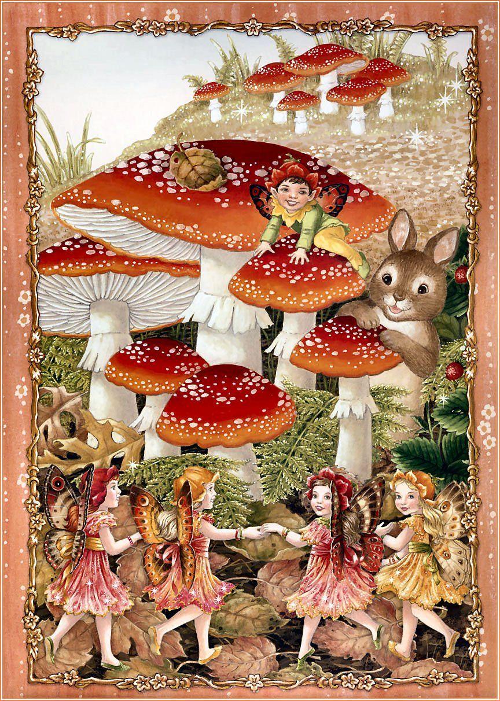 Fairies 201 Fairy pictures, Flower fairies, Fairy art