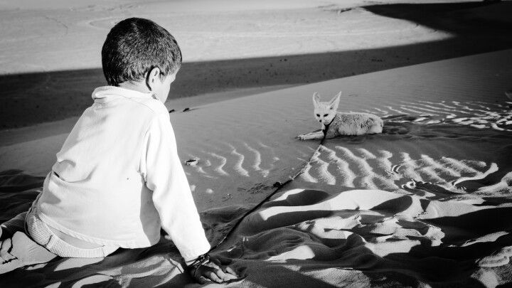 Fennek , Sahara , Morocco , berber child , marocco , dunes , desert tribe , fotos by: http://thomasforesti.weebly.com