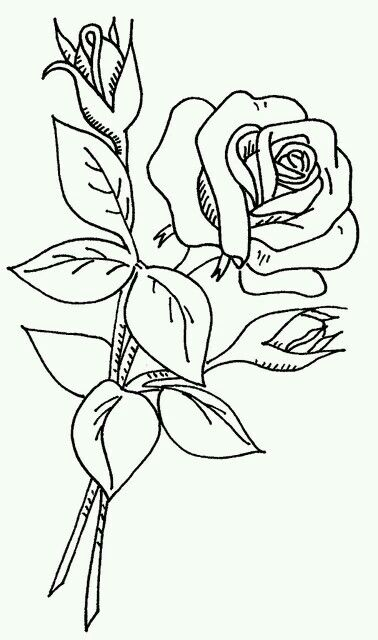 Rose On A Stem With Images Flower Coloring Pages Coloring