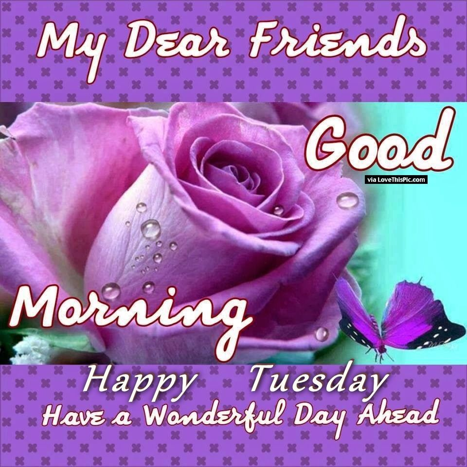 Happy Tuesday Images, Good Morning Tuesday Quotes Messages ... |Great Tuesday Morning Quotes