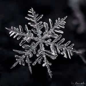 Silver Snowflake #JBRANDHOLIDAY #WMAG