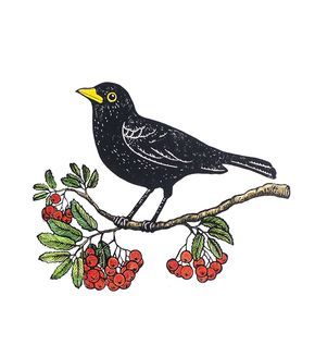 I recently got an email from Tian Gan, telling me about the story behind one of her latest lino cuts and sharing a couple of behind-the-scenes photos. For me, the motif is verysuitable for the fall season – and a perfect Friday Favourite! Tian Gan's new linocut Koltrast och rönnbär (Blackbird & Rowanberry) features a …