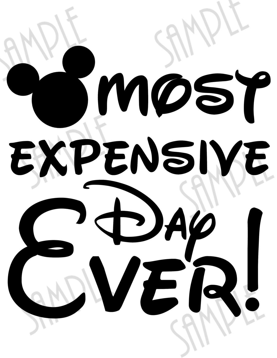 DISNEY******MICKEY MOUSE CASTLE MOST EXPENSIVE DAY EVER T-SHIRT IRON ON TRANSFER