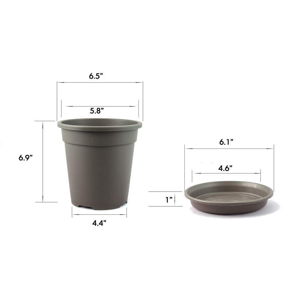 Truedays 10 Pcs 1 Gallon Plastic Garden Flower Pots Seeding Plant Container Nursery Pot With Saucers Coffee In 2020 Flower Pot Garden Container Plants Plastic Plants
