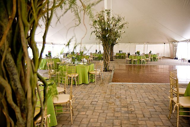 Wedding Decor Trees I Think This Would Be An Easy Way To Create Lots