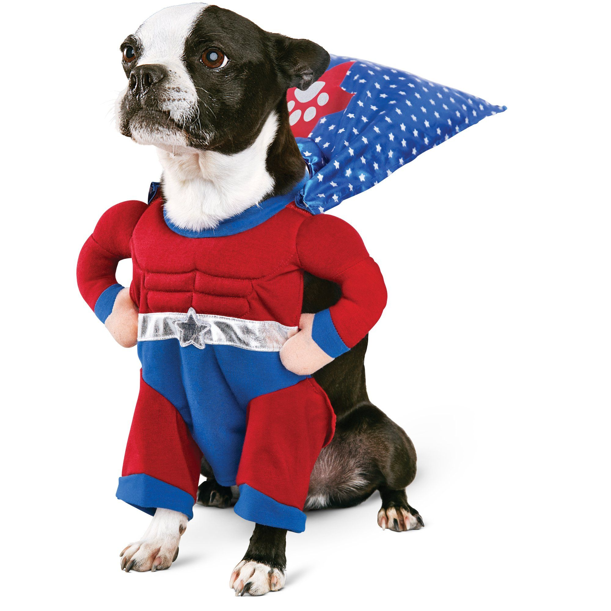 A Super Cute Super Hero Costume For Dogs And Cats This Would Be A