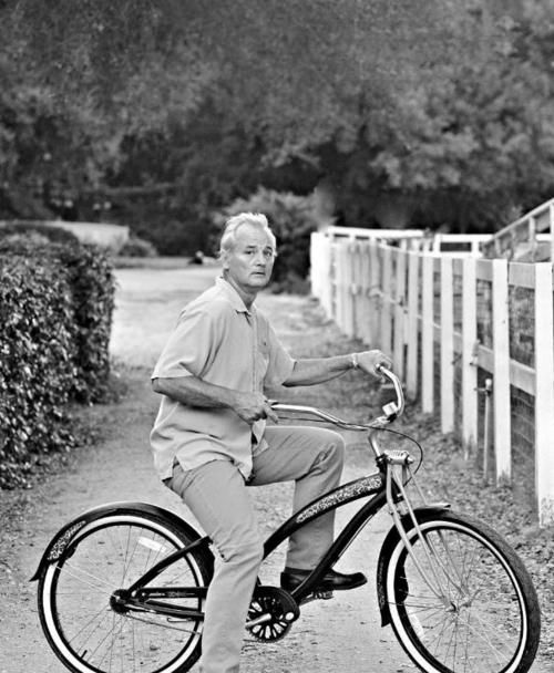 bill+murray+bike+cool.jpeg (500×608)