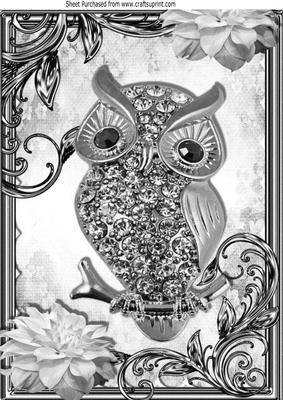 silver sparkle owl with flowers in ornate frame A4 on Craftsuprint - Add To Basket!