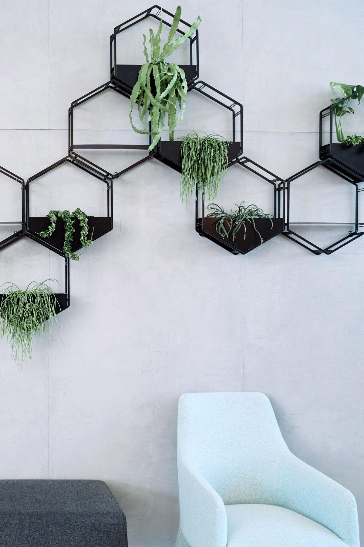 Wabe Wall Planter Oblica Melbourne Modern Designer Fireplaces Wall Planters Indoor Wall Planter Metal Wall Planters