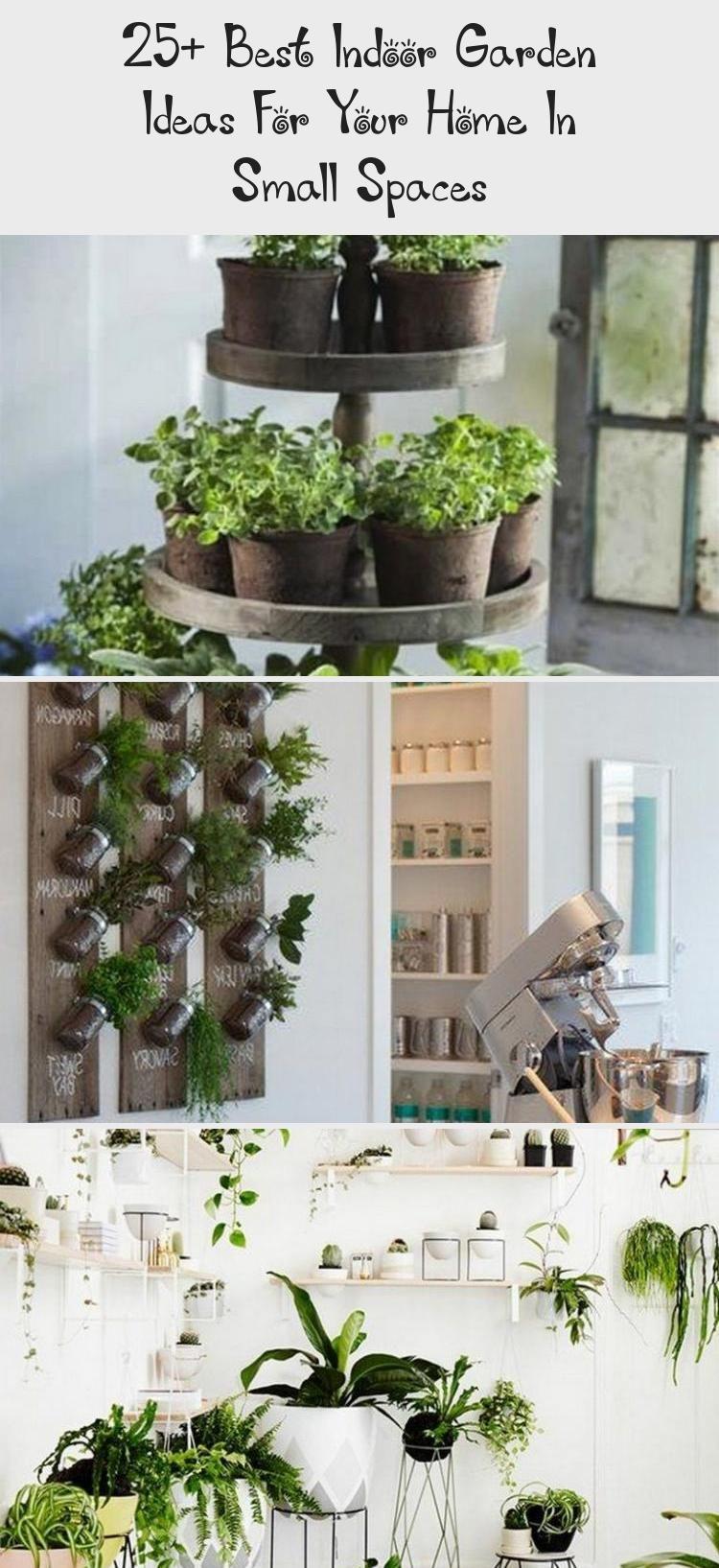25 Best Indoor Garden Ideas For Your Home In Small Spaces Indoor Indoorgarden Indoorgardenideas Indoorgarde In 2020 Indoor Garden Small Space Gardening Zen Garden
