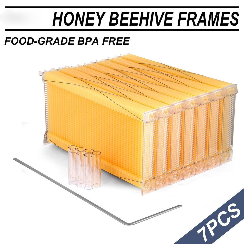 US 7PCS Free Flowing Honeycomb Beehive Wax Frames Beehive Kits for Beehive Nest