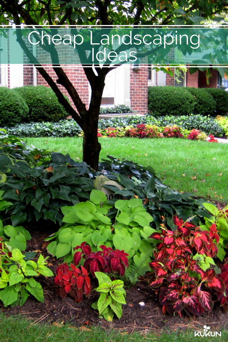 Budget Friendly Ideas For Front Yard Landscaping Of Your Outdoors Front Garden Ideas Curb Appeal Trees For Front Yard Landscape Ideas Front Yard Curb Appeal