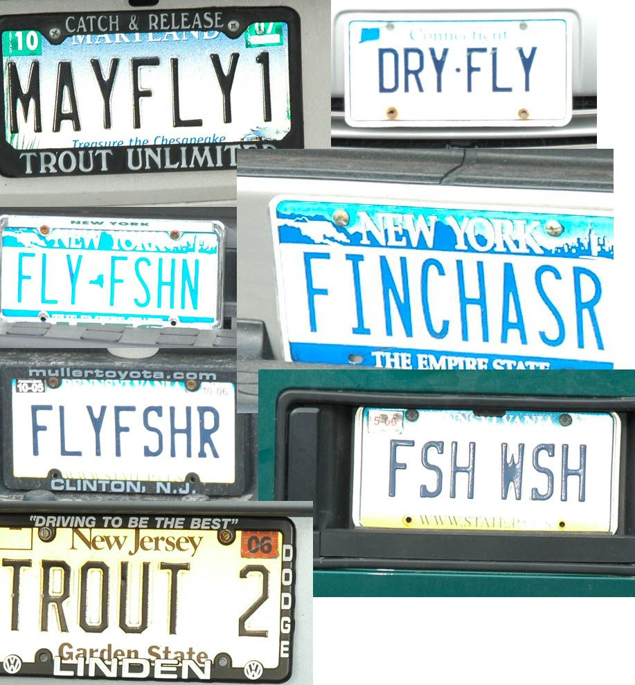 Smallmouth bass license plate! Kentucky Fish and Wildlife ...