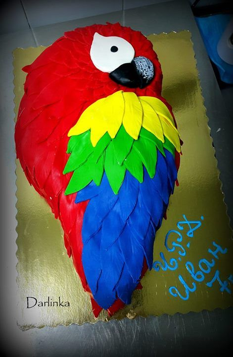 Parrot Cake My Cakes Cupcake Birthday Cake Parrot
