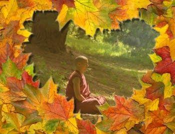 Si sabemos cómo crear la energía del amor,   la comprensión, la compasión, y la belleza,   entonces podemos aportar mucho al mundo.    ...