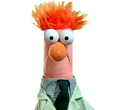 Which Muppet Are You? | Beaker muppets, Muppets, The muppet show