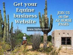 How to Get Free   Business Listing in Arizona http://www.biphoo.com/business/article/how-to-get-free-business-listing-in-arizona