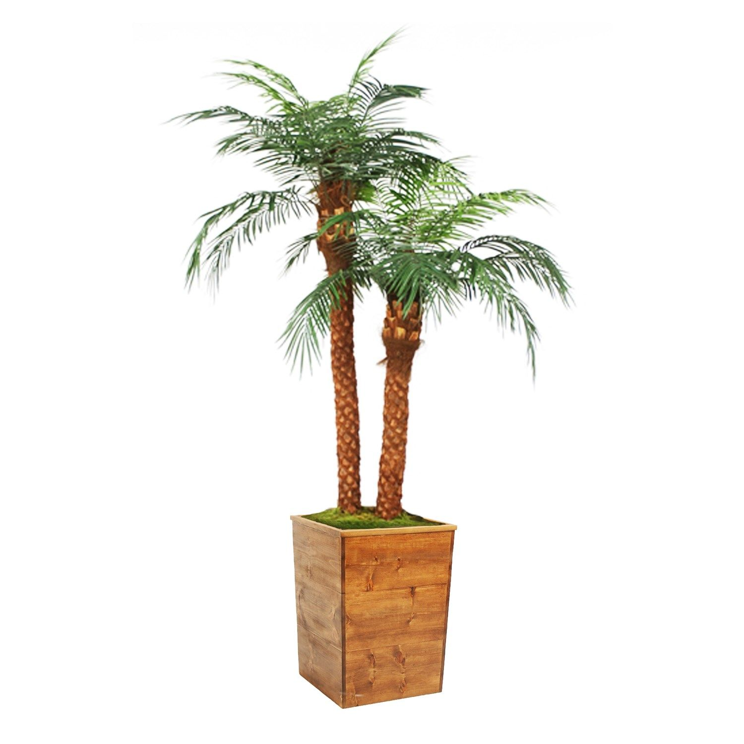 Distinctive Designs T 768 85 L9 8 1 2 Phoeni X Palm Tree X 2 In Tall Square Stained Wood Planter With Images Distinctive Designs Staining Wood Wood Planters
