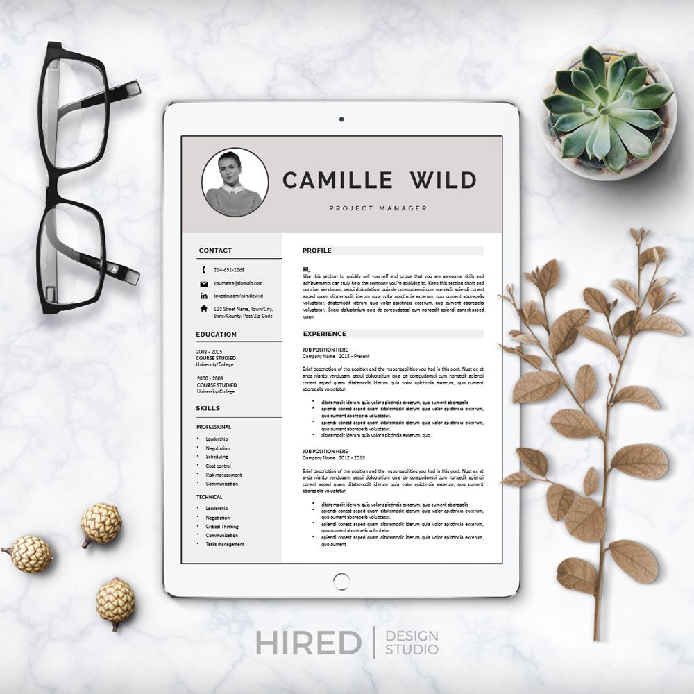 Professional CV Template; Resume For Word And Pages; 1, 2