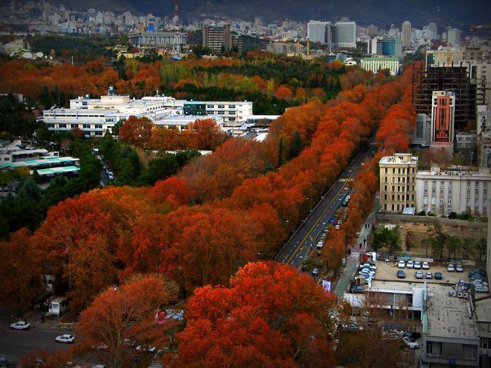 154 Of The World S Most Magical Streets Shaded By Flowers And Trees Visit Iran Tehran Tehran Iran