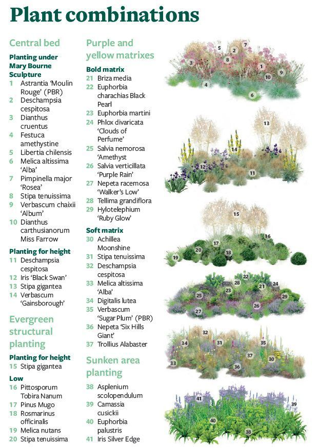 Plan - Erstellen Sie Ihre eigene Version des RHS Feel Good Garden - Gartenfreu...