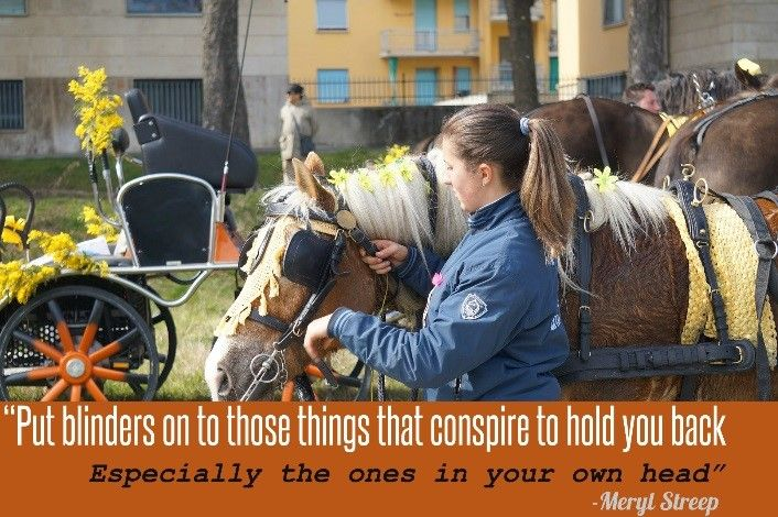 """""""Put blinders on to those things that conspire to hold you back, especially the ones in your own head"""" – Meryl Streep"""