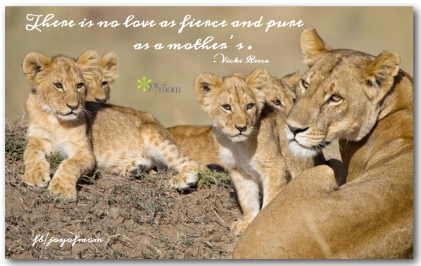 Pin by Joy of Mom on joy of mom | Lioness quotes, Lion ...
