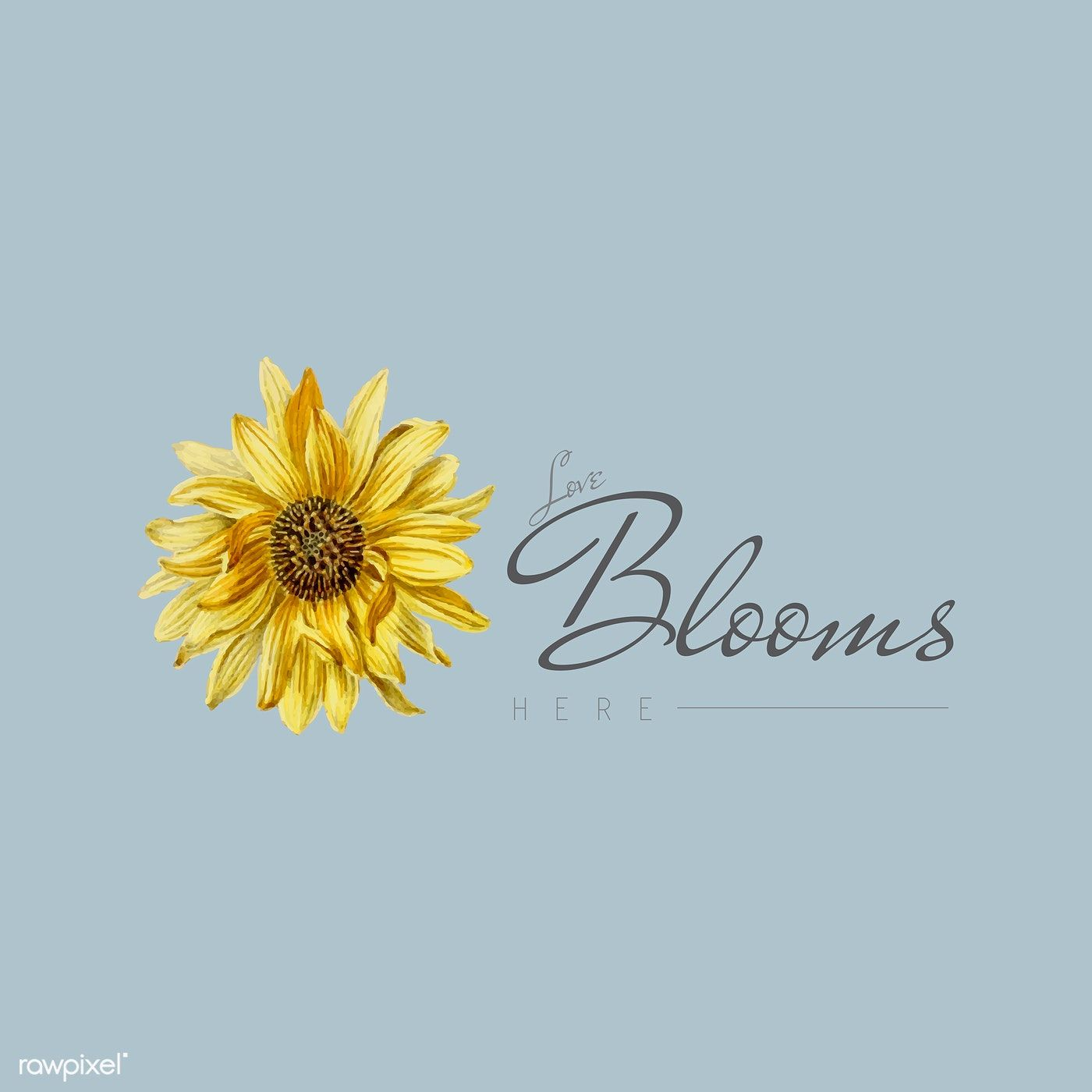 Download Love blooms here with sunflower vector   free image by ...